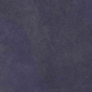Azul Violeta